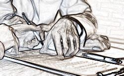 ТД и КД – какой из этих договоров важнее
