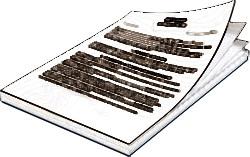 Структура агентского договора на оказание услуг