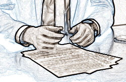 Срочные и бессрочные трудовые договора