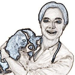 Трудовой договор с ветеринарным врачом